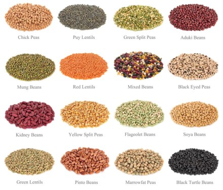 Green-Lentils-Red-Split-Lentils-LAIRD-ESTON.jpg